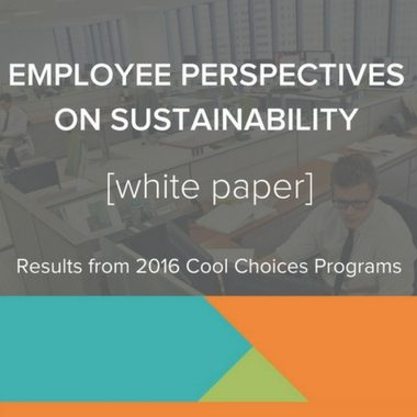cool choices employee perspectives white paper download now